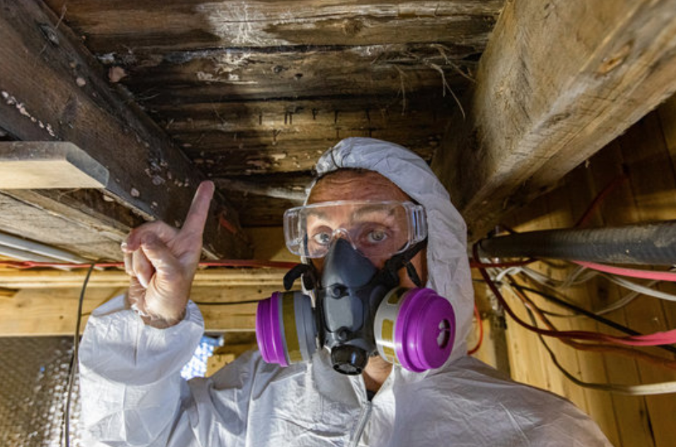 Worker pointing at mold